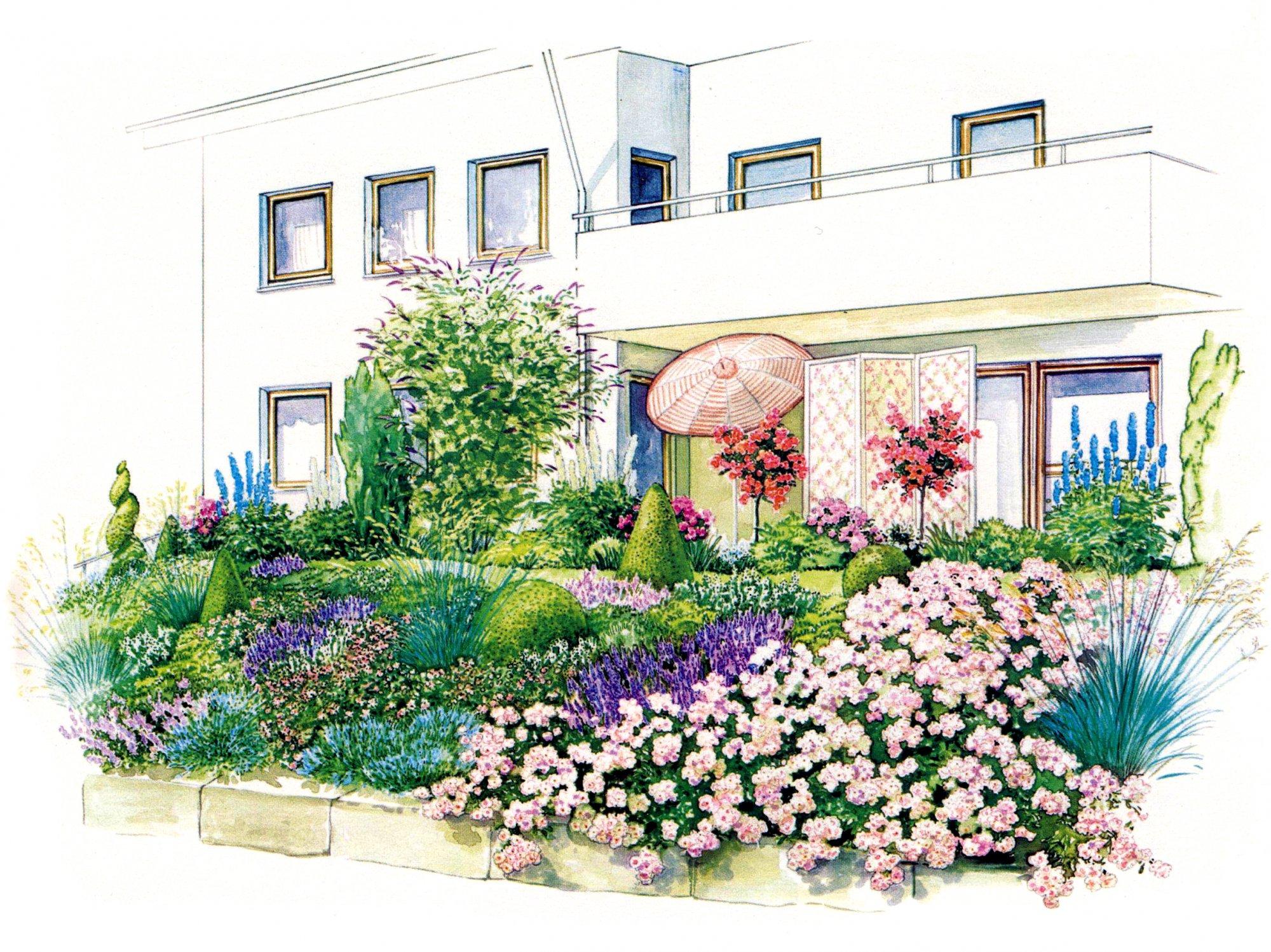Розарий и душистый сад на склоне
