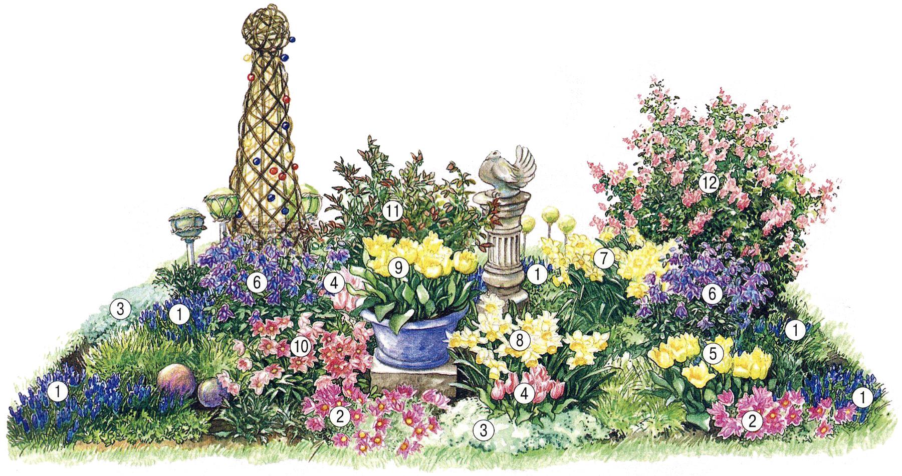 Непрерывно цветущая клумба - весна