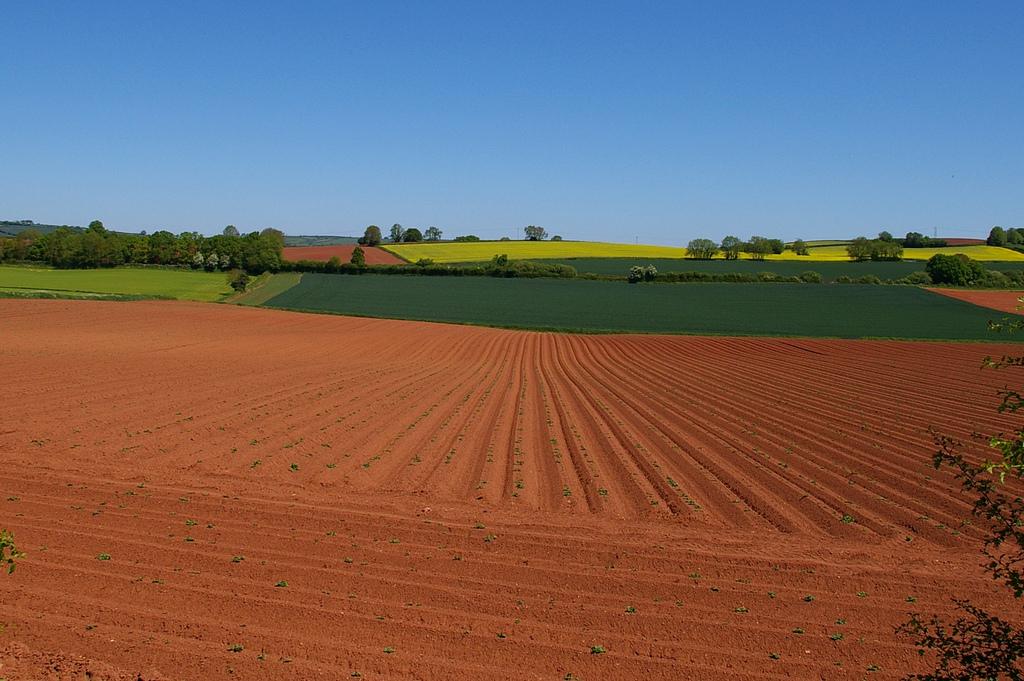 Строение почвы