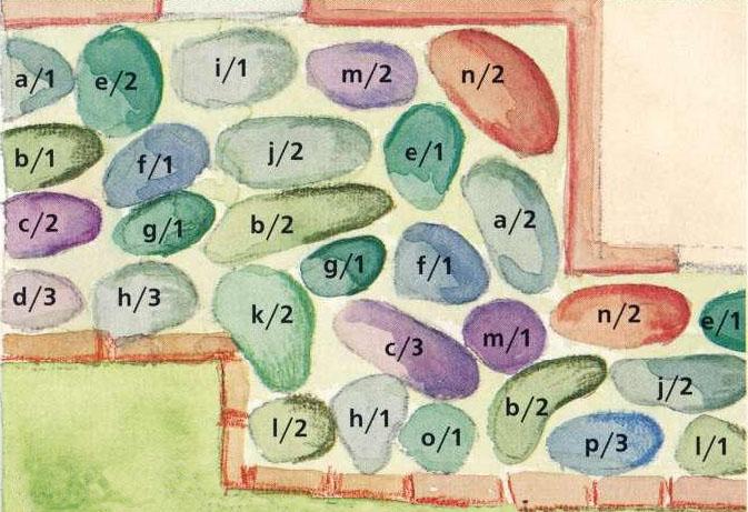 План цветника с серебристыми растениями